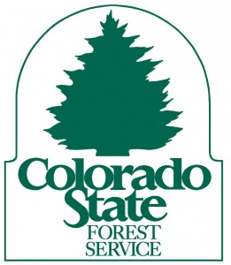 CO-State-Forest-Service-261x300